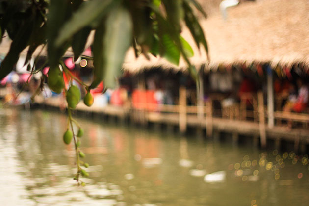 Bangkok Floating Market Tree