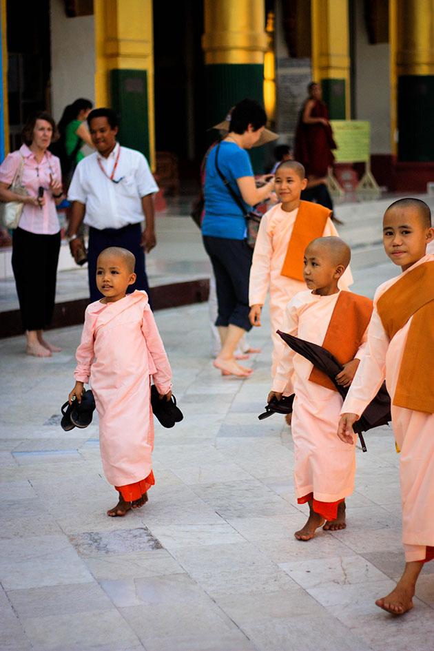Shwedagon 8