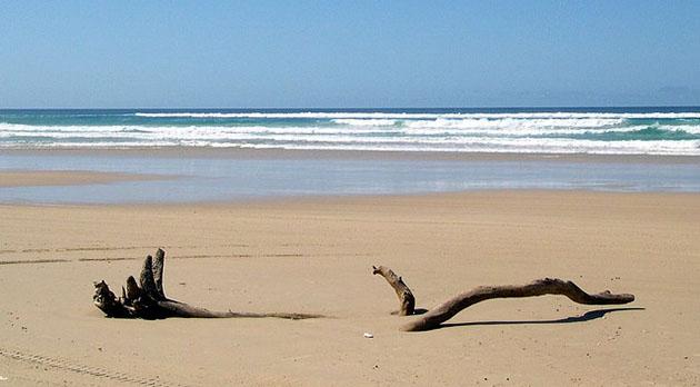 Fraser Island Queensland