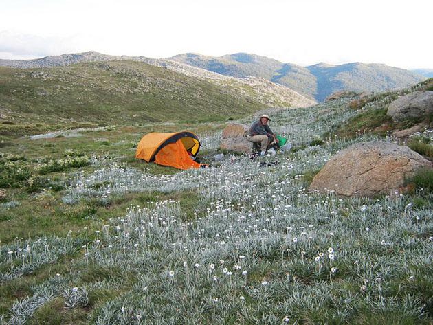 Main Range Kosciuszko National Park