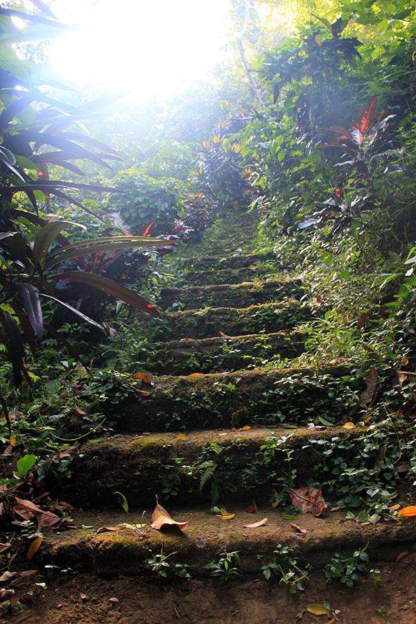 sliceofparadise-bali