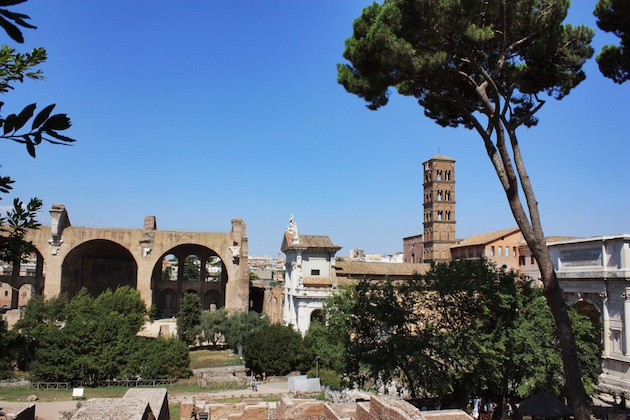 The Roman Forum from above.