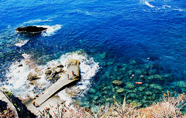 swimming in Corniglia